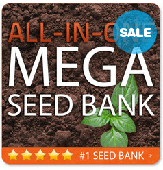 NEW  MEGA Seed Bank for Survival Emergency 100  GMO FREE  Non Hybrid